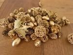 ゴールドペイント 木の実 アソートセット