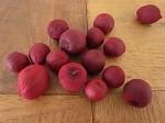 ペイント木の実 ワインレッド 15個セット